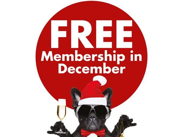 free membership in December
